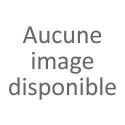 Stimulateur clitoridien - Langue aspitante - Vibromasseur haut de gamme